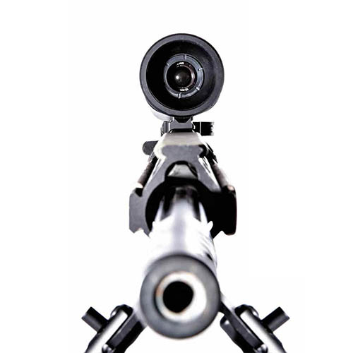 FLIR RS32 2.25 - 9X ThermoSight Infrared Rifle Scope, 320 x 240 Resolution, 9x Zoom (Attached to Rifle)